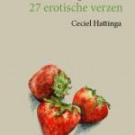 cover Snoepgoed Ceciel Hattinga